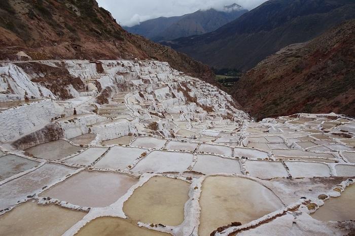 Salt History